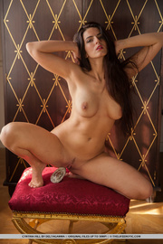 alluring brunette with beautiful