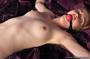Gagged naked lady has all her limbs boun - XXX Dessert - Picture 6