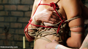 Naked blonde gets her body bound with ro - XXX Dessert - Picture 13