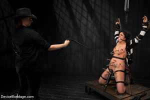 Sexy brunette humiliated in bondage and  - XXX Dessert - Picture 3