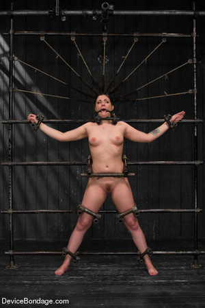 Hot tiny tits brunette vibrated in metal - XXX Dessert - Picture 3