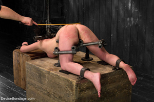 Hot tiny tits brunette vibrated in metal - XXX Dessert - Picture 12