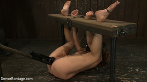 Cute and innocent girl bound and toyed c - XXX Dessert - Picture 14