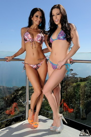 pussy hungry brunettes colorful