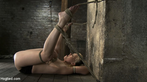 Teasing blonde captured, bound and toyed - Picture 8