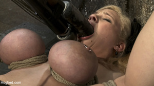 Teasing blonde captured, bound and toyed - Picture 12