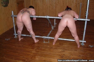 Two tattooed darlings get their sweet as - XXX Dessert - Picture 4