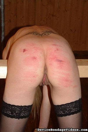 Two tattooed darlings get their sweet as - XXX Dessert - Picture 15