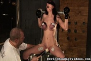 long haired honey gets