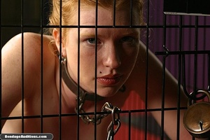 Caged darling is ready for a nasty dildo - XXX Dessert - Picture 7