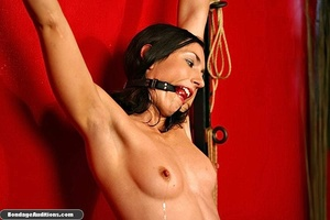 Tied up beauty gets a really painful cun - Picture 15