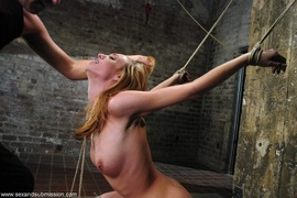 bondage, rough sex