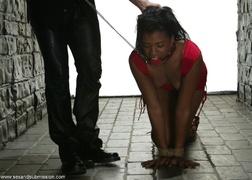 bondage, ebony, slave, white