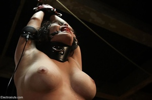 Gal is ball-gagged, tied and shocked as  - XXX Dessert - Picture 15