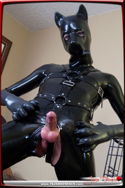 gorgeous chica-with-a-bone rubber dog