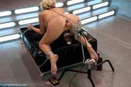 big tits, fucking machines, solo, tits