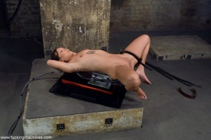 Inked Asian porn star is tied up and dri - XXX Dessert - Picture 1