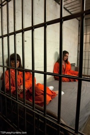 sex jail cell shared