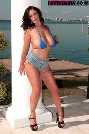 tattooed damsel blue bra
