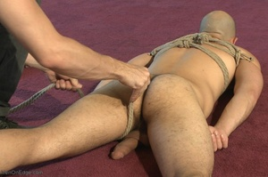 Bald dude gets tied up and drilled by hi - XXX Dessert - Picture 1