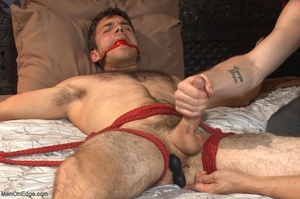 Red bearded master teasing blindfolded a - XXX Dessert - Picture 15