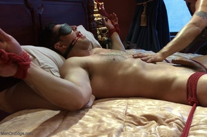 Blindfolded dude with a  muscled body ge - XXX Dessert - Picture 9