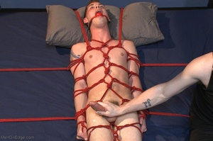 Young gay dude gets tied up and stimulat - XXX Dessert - Picture 17