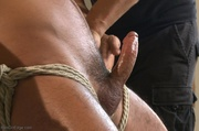 tied dude gets drilled