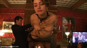 Dinner guests are dressed so divinely, b - XXX Dessert - Picture 15