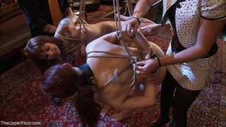 bondage, bound, rough sex
