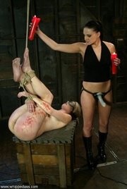 blonde cutied gets tied