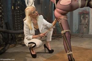 Blonde organizes crazy sexual experiment - XXX Dessert - Picture 6
