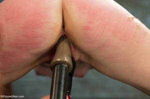 Sybian machine, breath play, and boundin - XXX Dessert - Picture 13