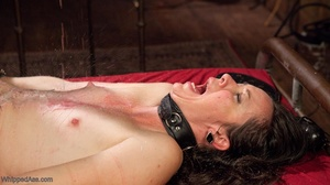 Amateur girl gets tortured by extravagan - XXX Dessert - Picture 18