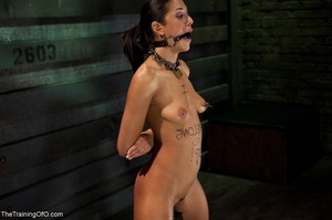 A ball gag and rope bondage bedevil a bo - XXX Dessert - Picture 18