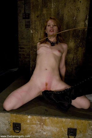 Face fucking and public nudity are part  - XXX Dessert - Picture 13