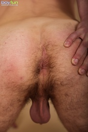 hairy erotic belly lovers