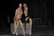 attractive submissive couple instructed