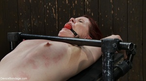 Red and raised cane marks adorn a ginger - XXX Dessert - Picture 14