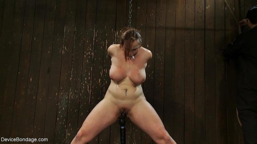 Toilet sex pics