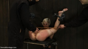 During a BDSM session, slaves are caged  - XXX Dessert - Picture 15