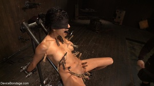 Clothespins placed on her body sting goi - XXX Dessert - Picture 14