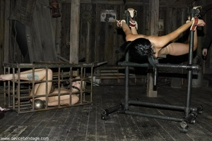 A series of horizontal red marks make a blonde's bottom look pretty broken in, by BDSM standards. - XXXonXXX - Pic 14