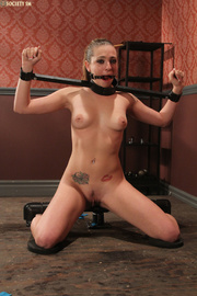hot brunette tied clipped