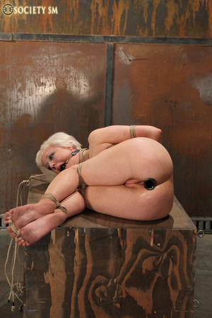 Lovely blonde tied, hung, gagged, shocke - XXX Dessert - Picture 5