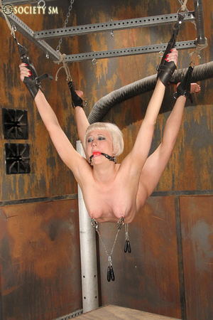 Lovely blonde tied, hung, gagged, shocke - XXX Dessert - Picture 6