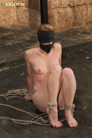 Cute blonde bound, clipped and humiliate - XXX Dessert - Picture 3