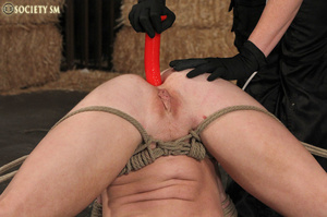 Cute blonde bound, clipped and humiliate - XXX Dessert - Picture 15