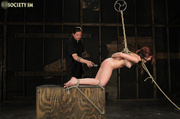 tasty brunette tied torture