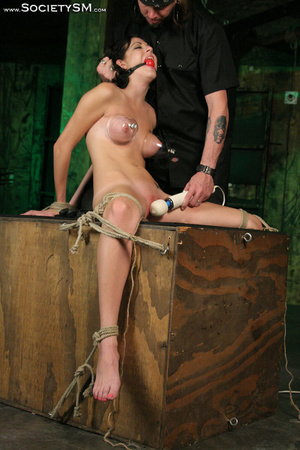 Sweet brunette tied, gagged, roped and s - XXX Dessert - Picture 2